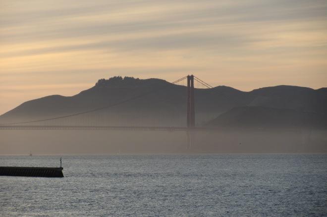 SF 2011